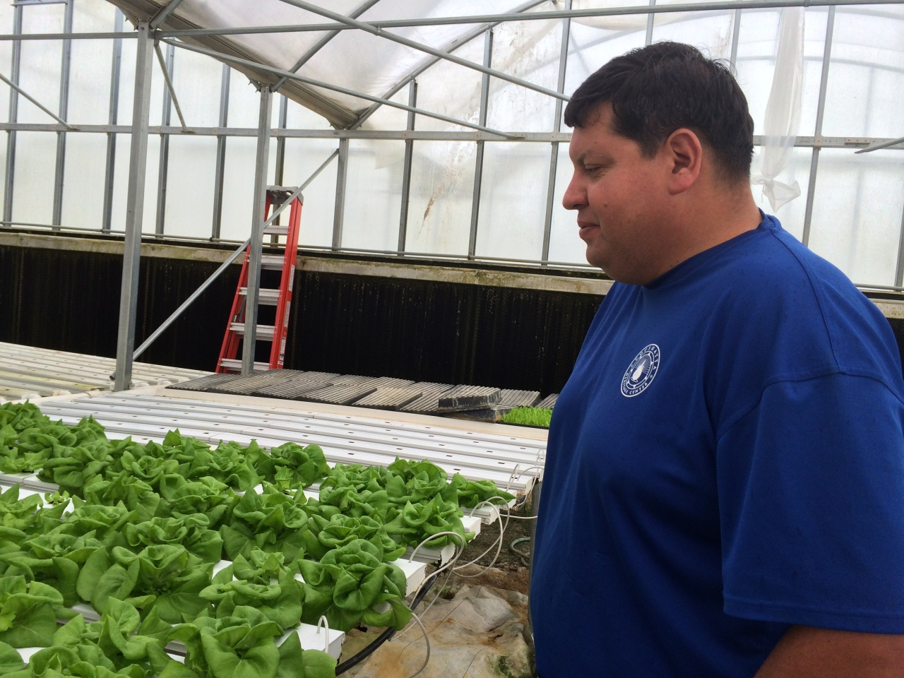 Coushatta  Indian Tribe of Louisiana Hydroponics Project