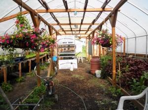 Greenhouse, 2013