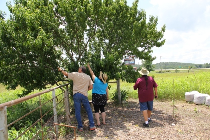 Stephanie, Bud and Ric examine a peach tree in the Eufaula garden. This tree is descended from seeds brought from the southeast on the trail of tears