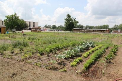 Okmulgee Community Garden