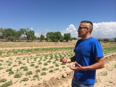 Jayson Romero giving us a tour through his fields. Photo by Elizabeth Hoover