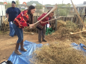 Threshing beans at on of the TOCA school gardens. December 2013
