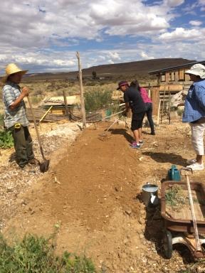 Hopi Tutskwa Permaculture Kykotsmovi Village AZ From