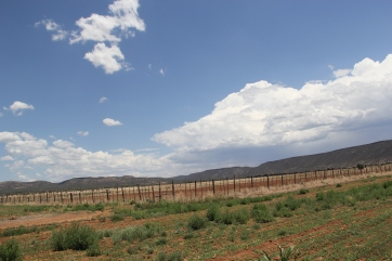 Ndee Bikiyaa fields on the White Mountain Apache's reservation. Photo by Angelo Baca