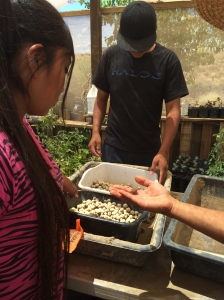 Juhriene and Hawthorne with seedballs- balls of clay and seeds that we threw into the wash to help vegetate it. Photo by Elizabeth Hoover