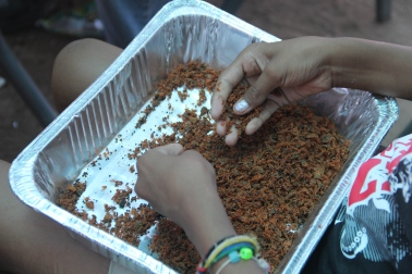 Separating bahidaj pulp from the tiny seeds. Photo by Angelo Baca