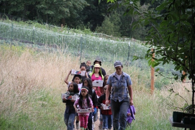 Project Supervisor Caitlin Karlin and a team of volunteer berry pickers. Photo by Angelo Baca