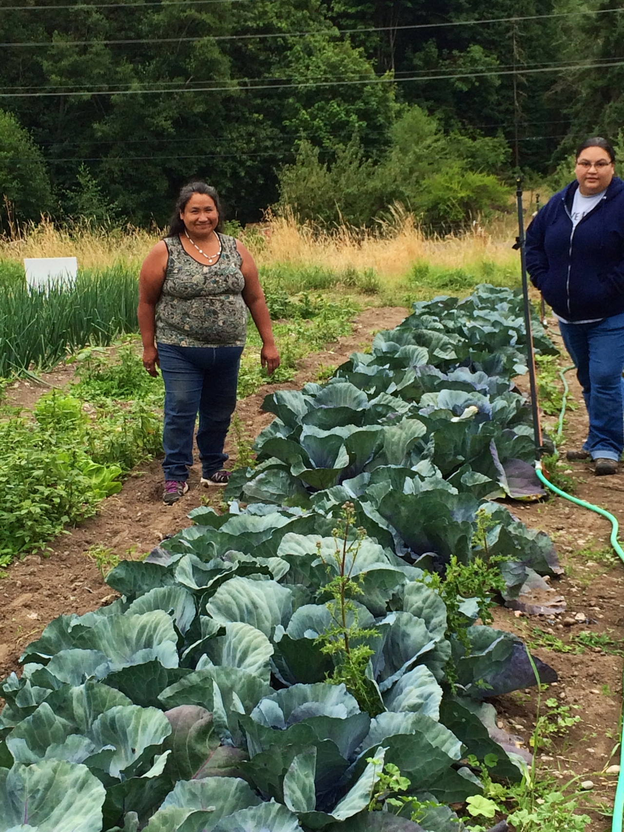 Nisqually Tribe Community Garden, Dupont WA