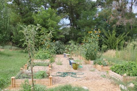 Elders community Garden. Photo by Angelo Baca