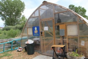 Greenhouse aquaponic projects. Photo by Angelo Baca