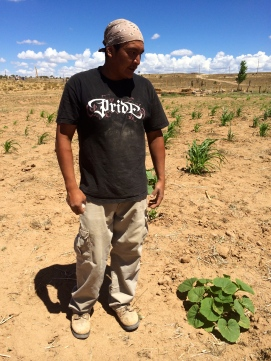 Roberto Nutlouis with a Navajo hubbard squash plant. Photo by Elizabeth Hoover