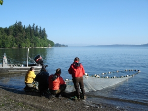 Nisqually fishermen. Photo courtesy of USGS