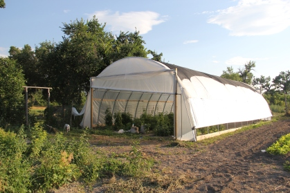 SBAP hoop house. Photo by Angelo Baca