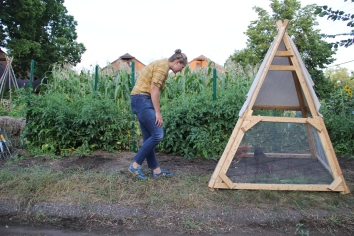 Annelie visiting the chicken tractor/tipi that hosts Mashkiikii Gitigan's two hens. Photo by Angelo Baca