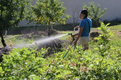 Annette watering the orchard while she gives me a tour. Photo by Angelo Baca