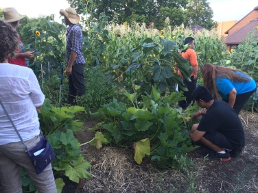 Volunteers weeding the garden. Photo by Elizabeth Hoover