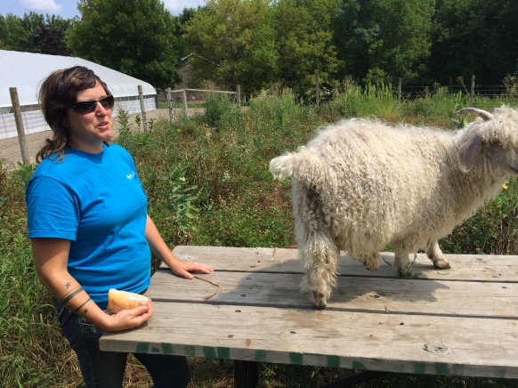 Angelica Adams, Wozupi programs coordinator, hangs out with one of the program's new angora goats. Photo by Elizabeth Hoover