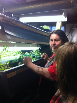 Ted learned about aquaponics while taking the Commercial Urban Agriculture class at Growing Power in Milwaukee. Eventually, he'd like to see this technology utilized around the reservation on a larger scale. In the mean time, he's experimenting in the basement of the Tsyunhehkwa offices. Photo by Elizabeth Hoover (April 2013). (The head in the foreground is Terri Martinson from the Taos County Economic Development Corporation)