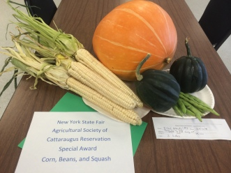 Corn, beans and squash, grown by the Early Childhood Learning Center students and staff, Cattaraugus reservation. Photo courtesy of Jason Corwin