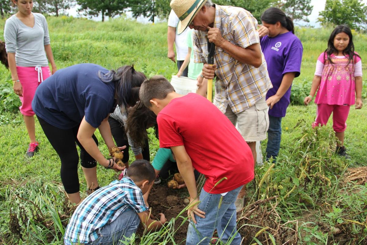 Southwest Wisconsin News >> Whirling Thunder Organic Farm, Ho-Chunk Nation, Wisconsin ...