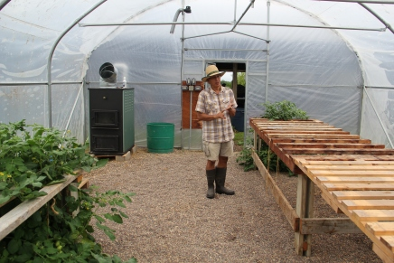 Woody in the program's certified organic greenhouse, heated with a wood pellet stove. This past spring 700 or more plants were started in here, that then went into the program's garden, as well as the Blue Wing community garden, and the  Chey-ka-shee community garden in Nekoosa. The Amish Roma tomatoes seeded themselves, and are thriving! Photo by Elizabeth Hoover