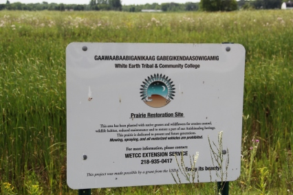 The Extension office also planted 2 1/3 acre of prairie, in an effort to restore the natural landscape. Photo by Angelo Baca
