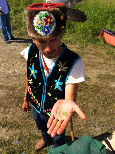 Michael Dahl holding wild rice that they picked while out on Rice Lake. Photo by Elizabeth Hoover