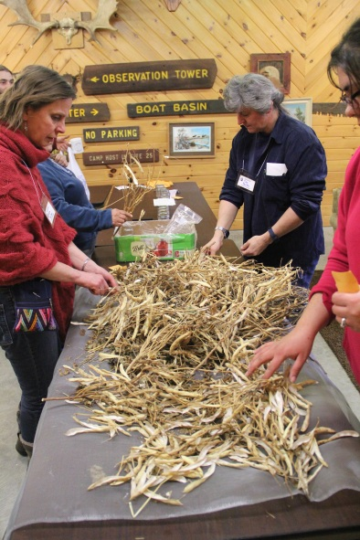 Seed swapping was also a big part of the conference. Here, participants are shelling orca beans to take home to their own gardens. Photo by Elizabeth Hoover