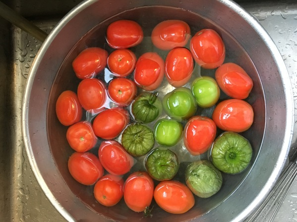 Tomatoes and tomatillos. Photo by Elizabeth Hoover