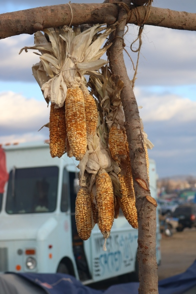 Dried sweet corn hanging from Winona's outdoor kitchen. In the background is the water truck that came around every day to deliver fresh drinking water to camps. Photo by Elizabeth Hoover